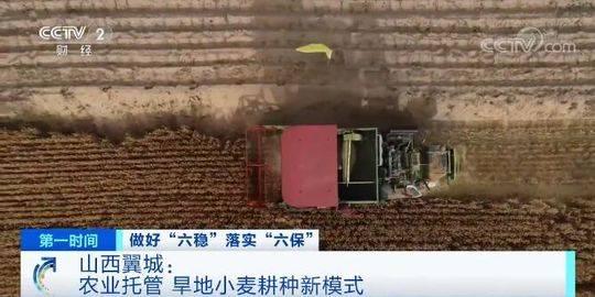 山西翼城:农业托管 旱地小麦耕种新模式图片
