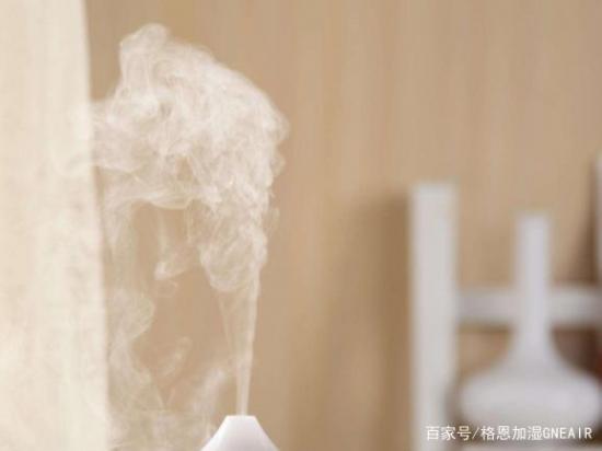 鼻炎可以用加湿器吗?牢记这些缓解你的症状