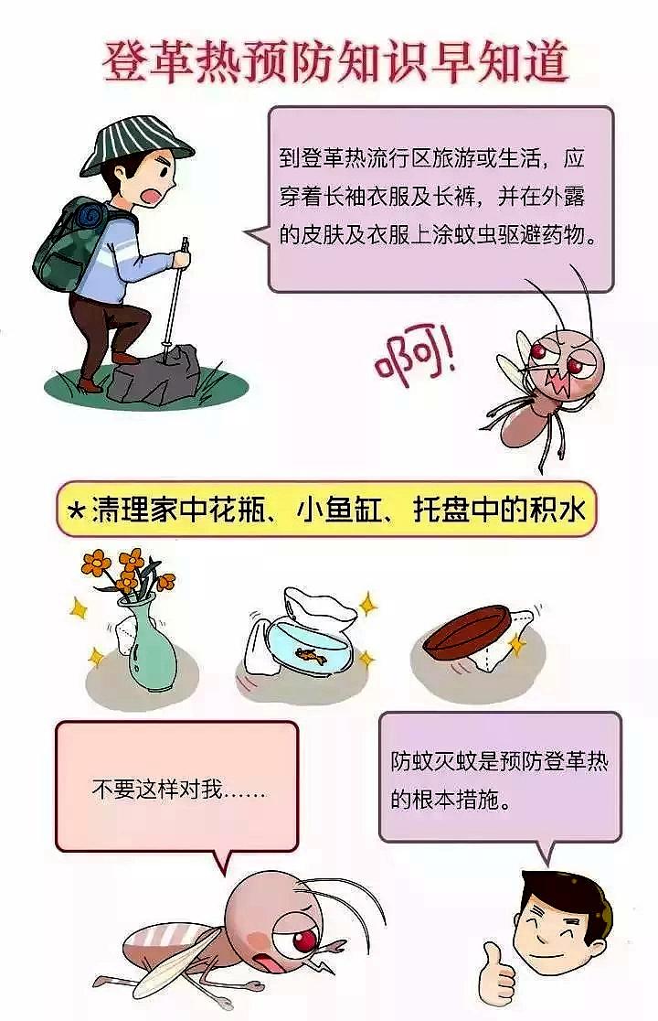 摩鑫代理防登革热江苏句摩鑫代理容出现1例登革图片