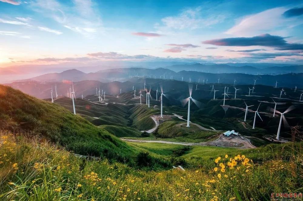 图片·故事|大风车唱响致富歌图片