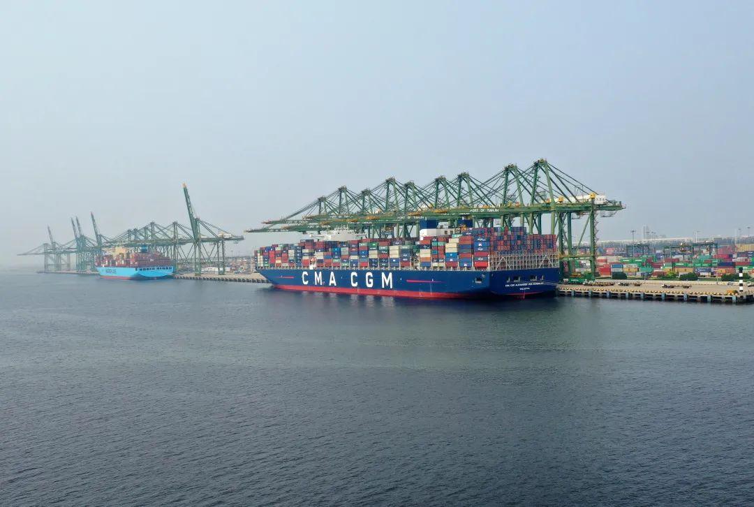这是2019年8月8日无人机拍摄的天津港集装箱船埠群一景。新华社记者 李然 摄
