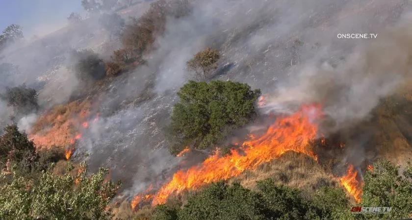 △高温气候影响下美国加州山火频发