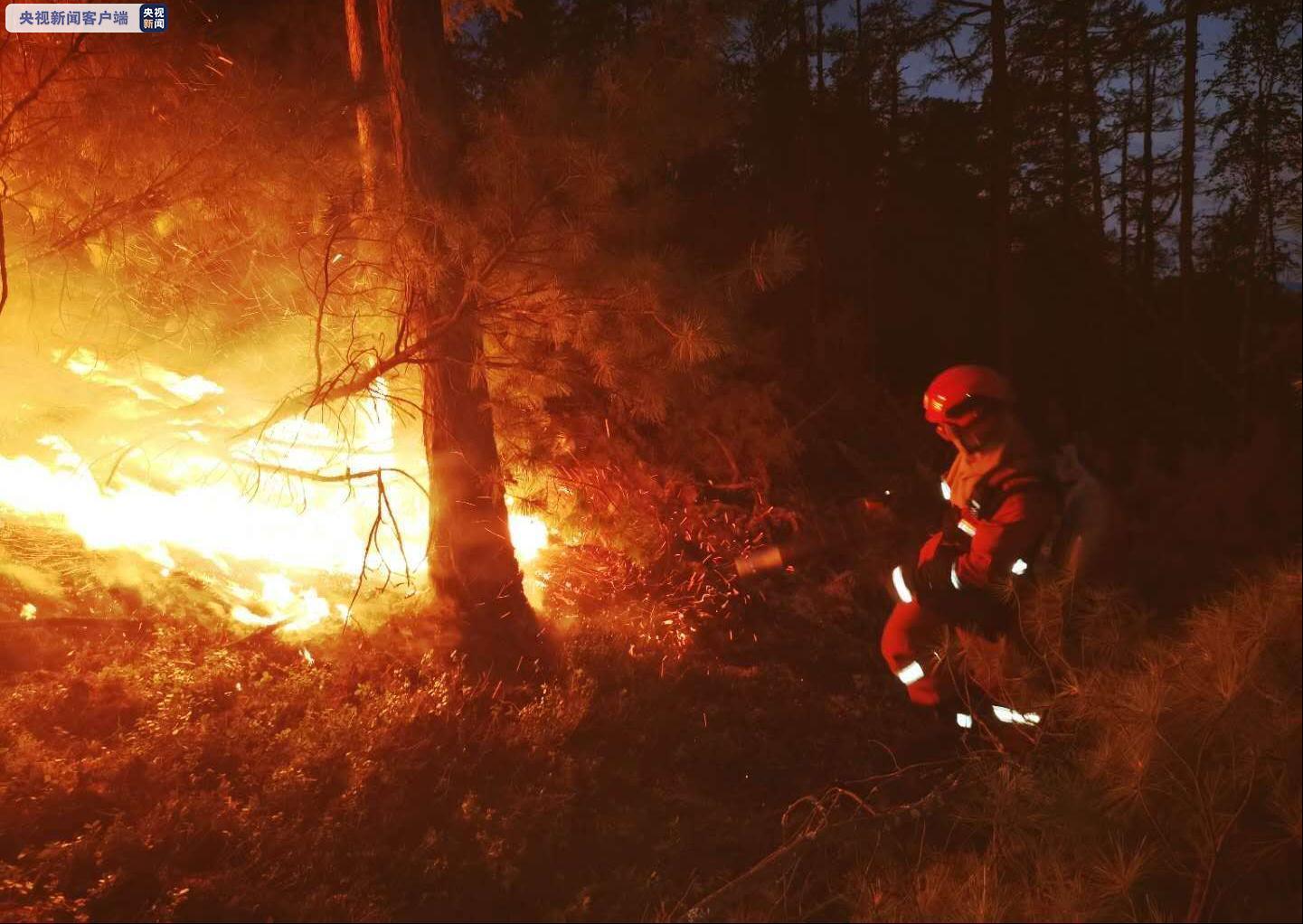 内蒙古大兴安岭毛河林场火灾外线明火被扑灭图片