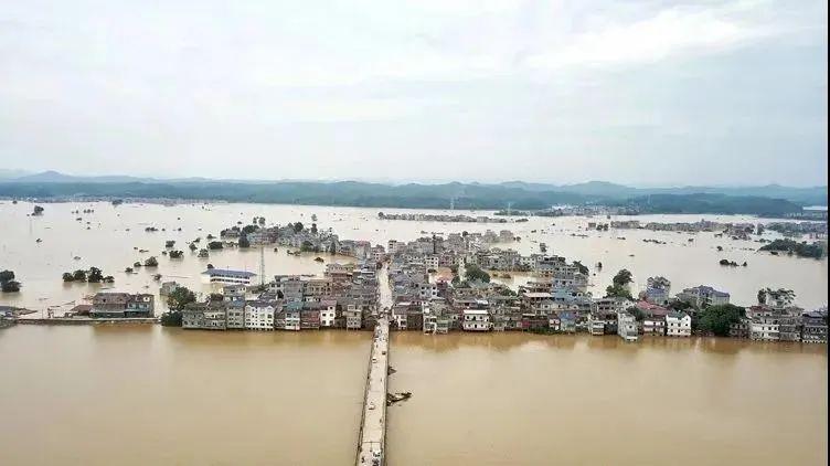水利部部长鄂竟平 赴江西抗洪一线图片