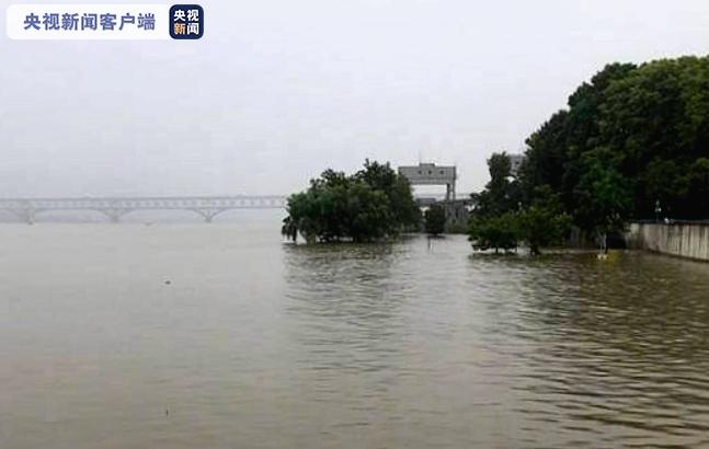 长江南京站16日8时水位10.08米 超警戒1.38米图片