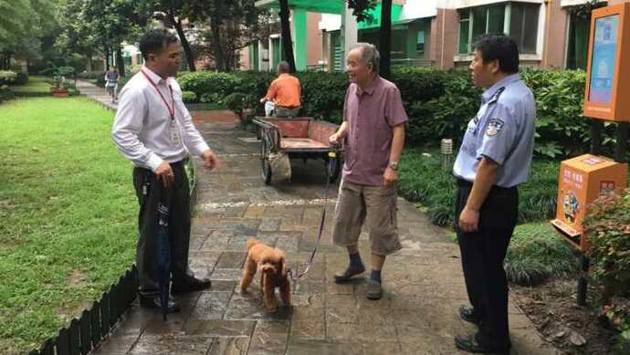 杏悦:无证不牵绳不带嘴套…杏悦…上海对违图片