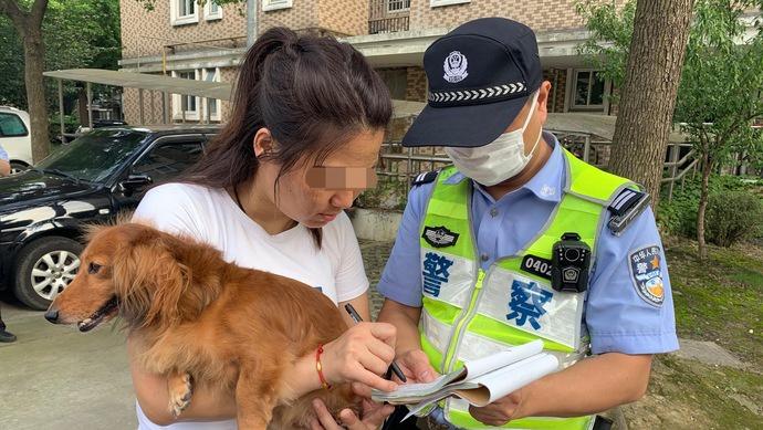 杏悦:法难发现上海如何破解不文杏悦图片