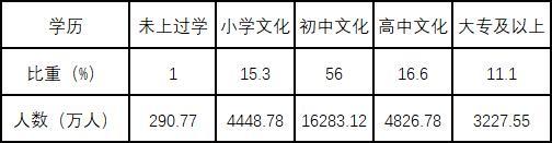 李铁:中国的人口红利时代还在吗?图片
