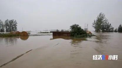 庄台周边被淹的农田和公路