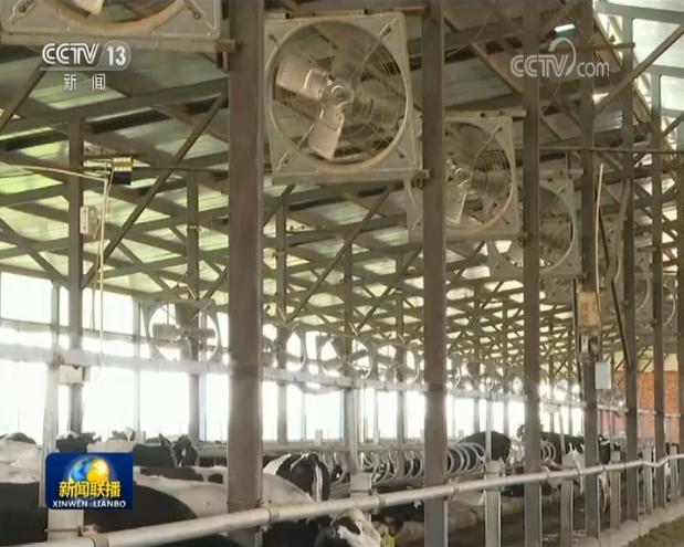 [杏悦]内蒙古打造产业集群促杏悦进奶业图片