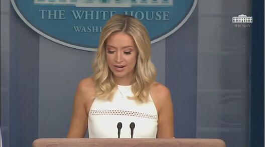 麦克纳尼在31日白宫新闻发布会上