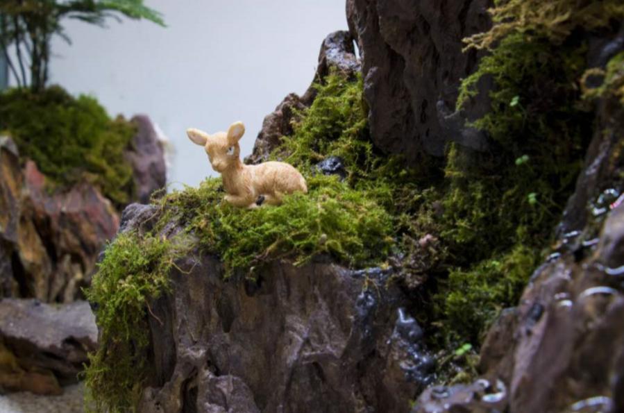 """超想去!来西农的这个艺术展""""游山玩水""""!"""