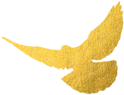 """呵护官兵施大爱,民安国泰半功臣——青岛市""""十佳好军嫂""""白玉凤"""