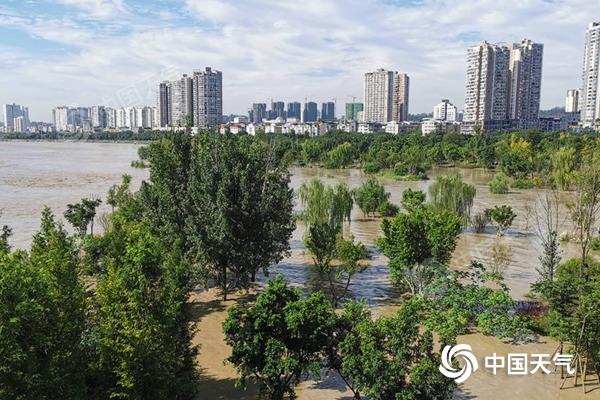 △受持续强降雨影响,洪峰过境四川遂宁,导致湿地公园被淹。