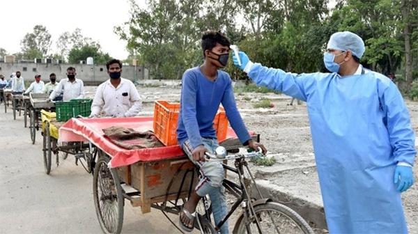 旁遮普邦菜市场的小贩接受体温监测