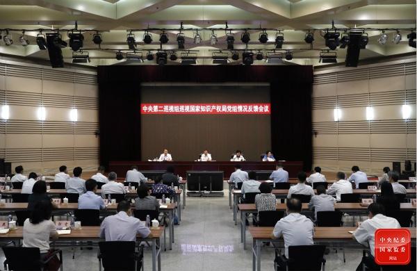 中央巡视组:国家知识产权局促进知识产权成果运用和转化不够