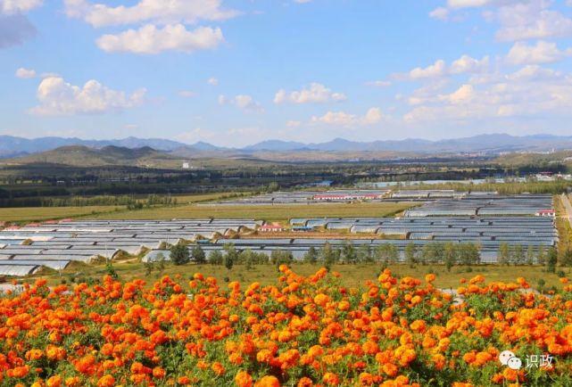 设施农业成为草原一景