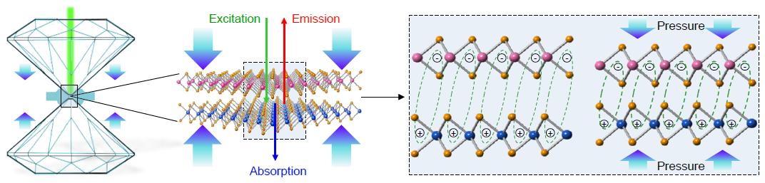 Nature Physics|电子科大在新型二维材料物理研究方向取得突破性进展