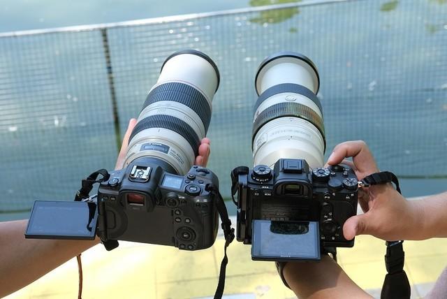 《【多彩联盟娱乐测速登录】巅峰对决!EOS R5、A9 II谁是生态摄影利器》