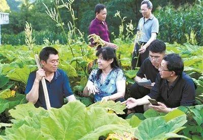 《中国教育报》整版报道!为你们骄傲!