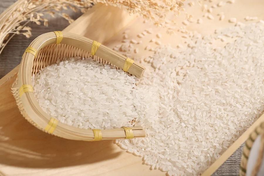 """世界濒临严重粮食危机 中国老百姓的""""米袋子""""会受影响吗?"""