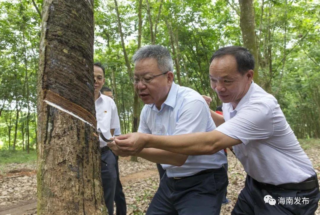 沈晓明在白沙调研时强调 努力实现生态环境保护和经济社会发展有机统一