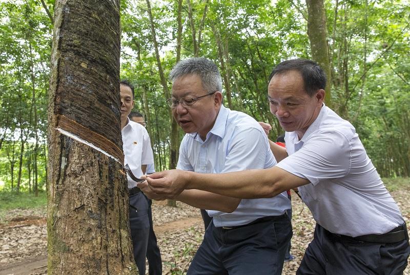 沈晓明:努力实现生态环境保护和经济社会发展有机统一