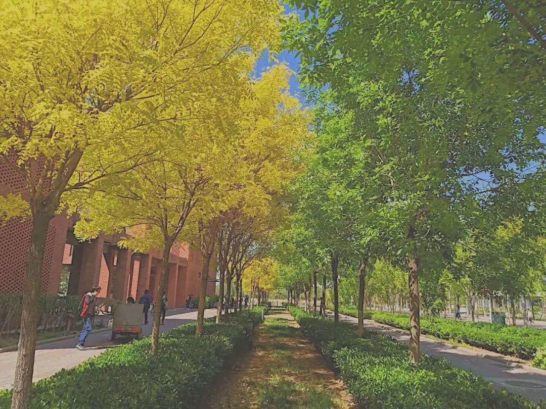 [亿兴代理]立秋|夏尽秋来亿兴代理金风送图片