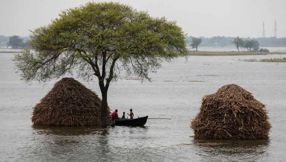 印度比哈尔邦洪灾持续 已致19死666万人受灾