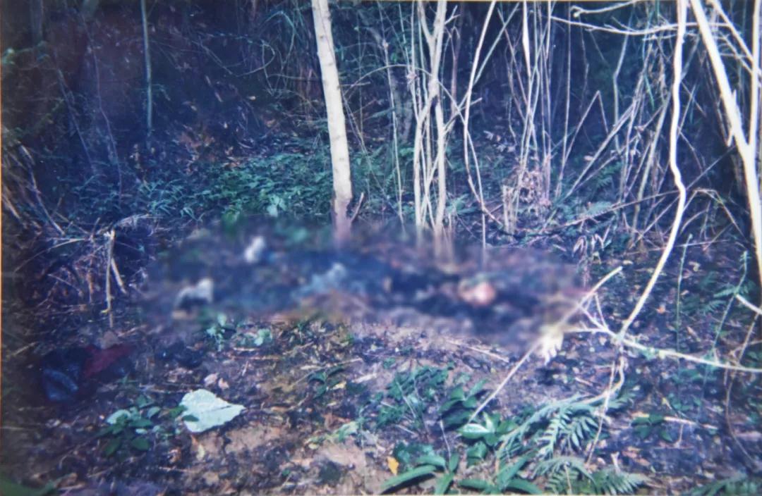广西17年前连环杀人案告破 犯人供述谋财杀人全过程