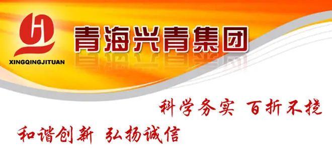 ·兴青团体官网展示的团体精力。