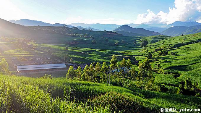 一根甘蔗开发出7大类34个产品!云南最大蔗区临沧市脱贫攻坚 建成2200万亩高原特色农业