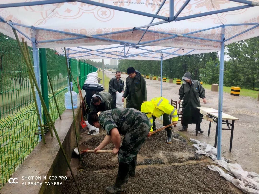 建安部防汛突击队员们在平整园地(刘文奎 供图)