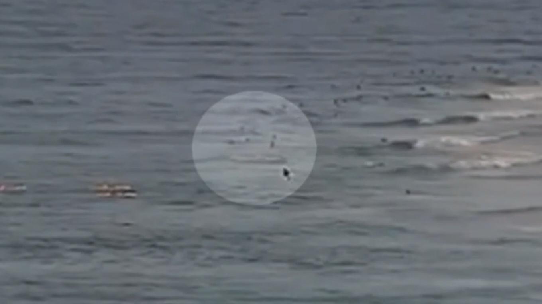 澳大利亚男子冲浪时遭鲨鱼袭击因伤势过重死亡
