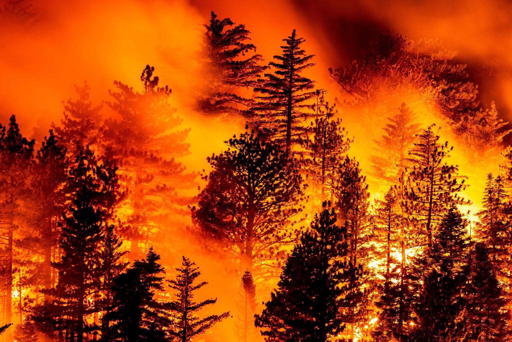 △加利福尼亚州山火持续蔓延 图片来源:《纽约时报》