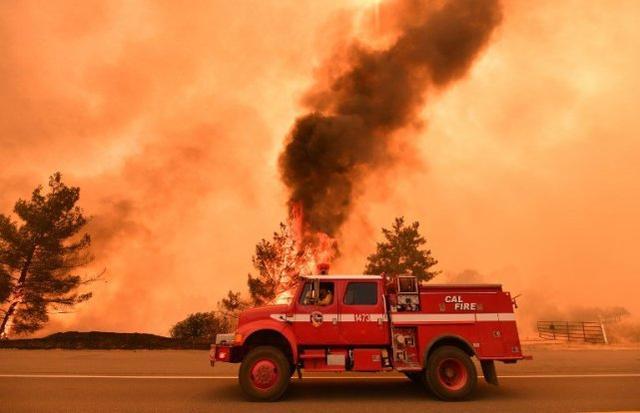 加州创纪录山火引发政治争端,洛杉矶市长:政府把头埋在沙子里