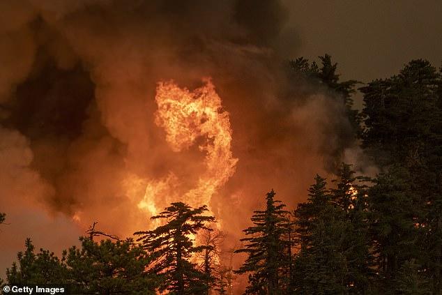 """美国洛杉矶""""山猫""""野火。(图:Getty)"""