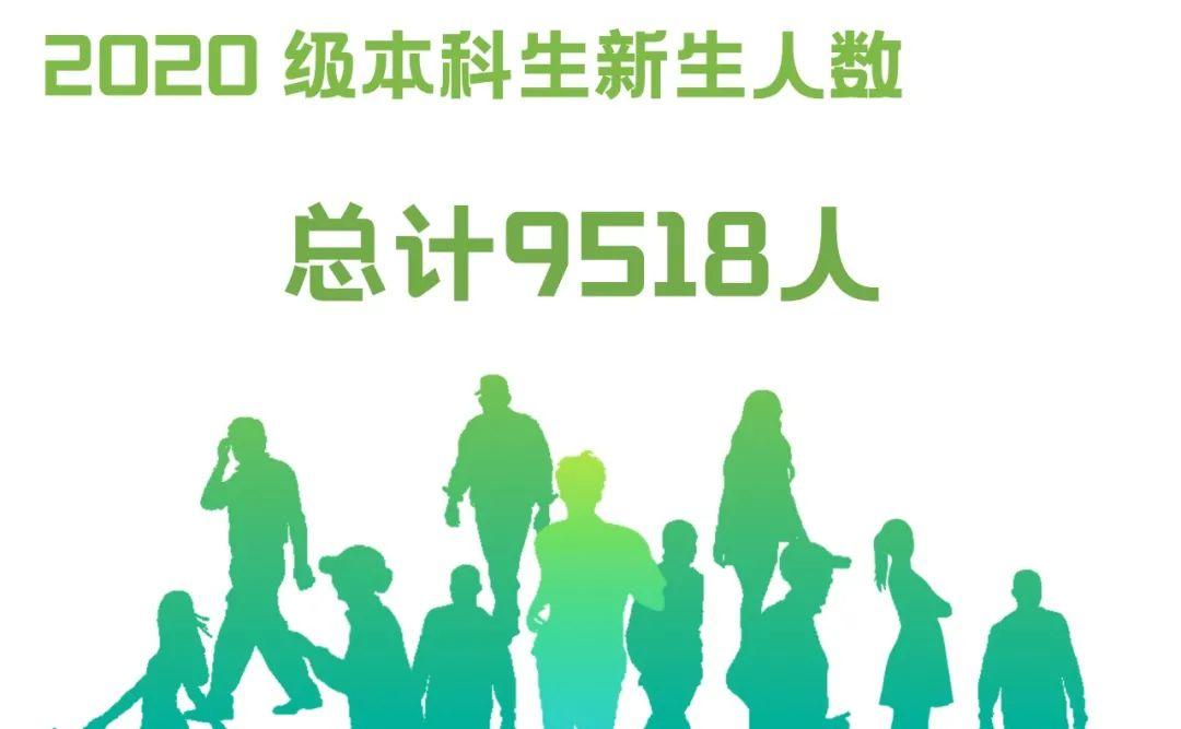男女比例、毕业中学……广工2020级新生大数据揭秘!图片