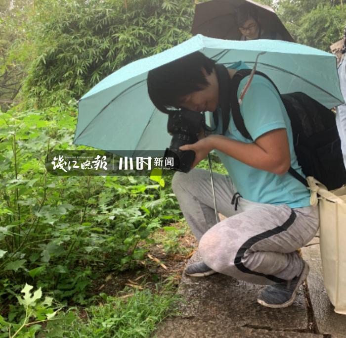 钱江晚报:西溪湿地究竟藏着多少植物?植物学家一上午就记下了近120种图片