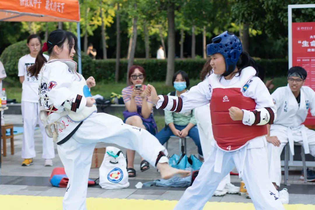 道跆拳▲成会的协进正在员 路演行格彭雨( 摄 )。