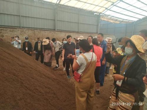 西藏山南市考察团到浠水县考察蛋鸡养殖业
