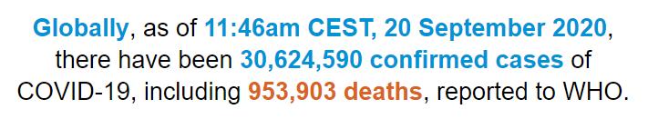 世卫组织:全球新冠肺炎确诊病例超过3062万例