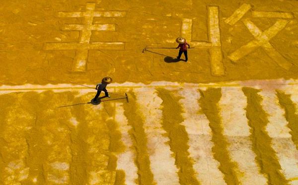 镜头 | 中国农民丰收节图片