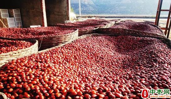 永和:开展红枣成熟期专题气象服务