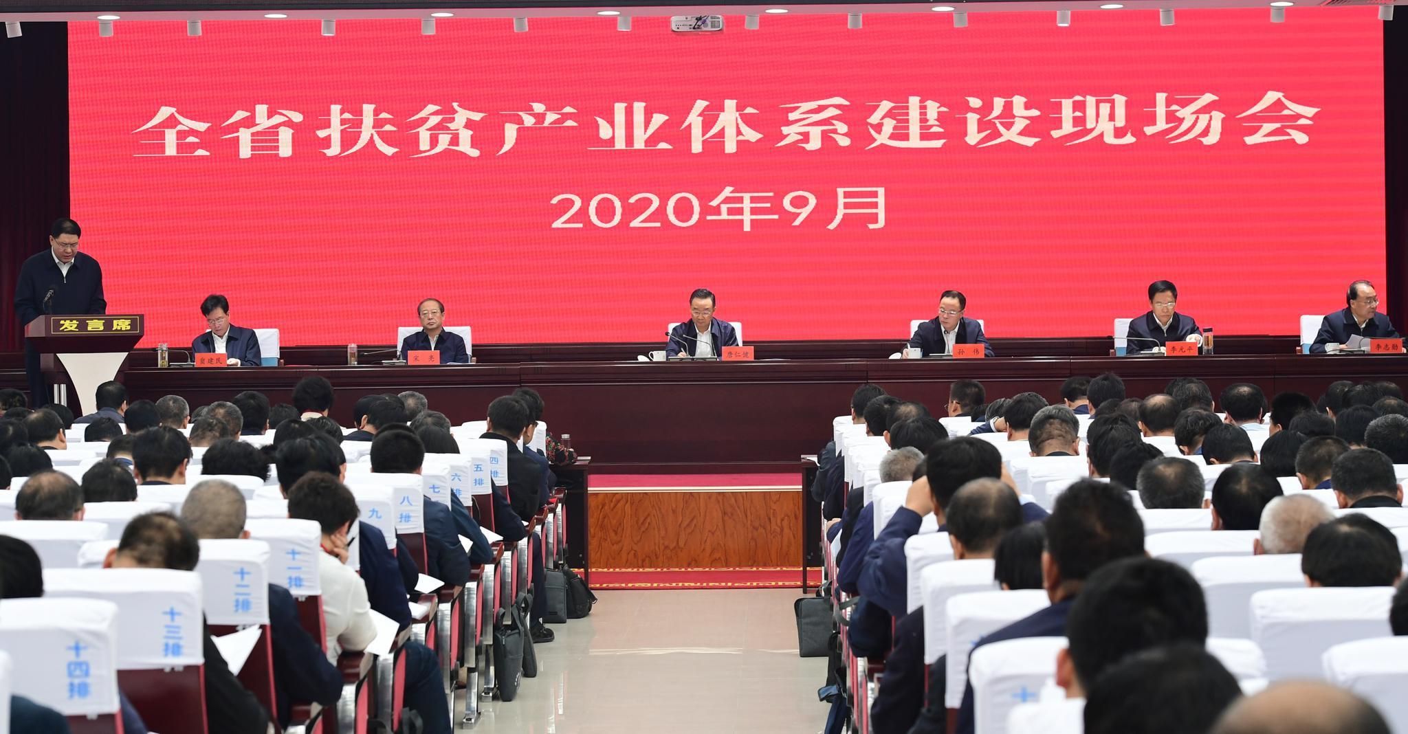 全省扶贫产业体系建设现场会在环县召开图片