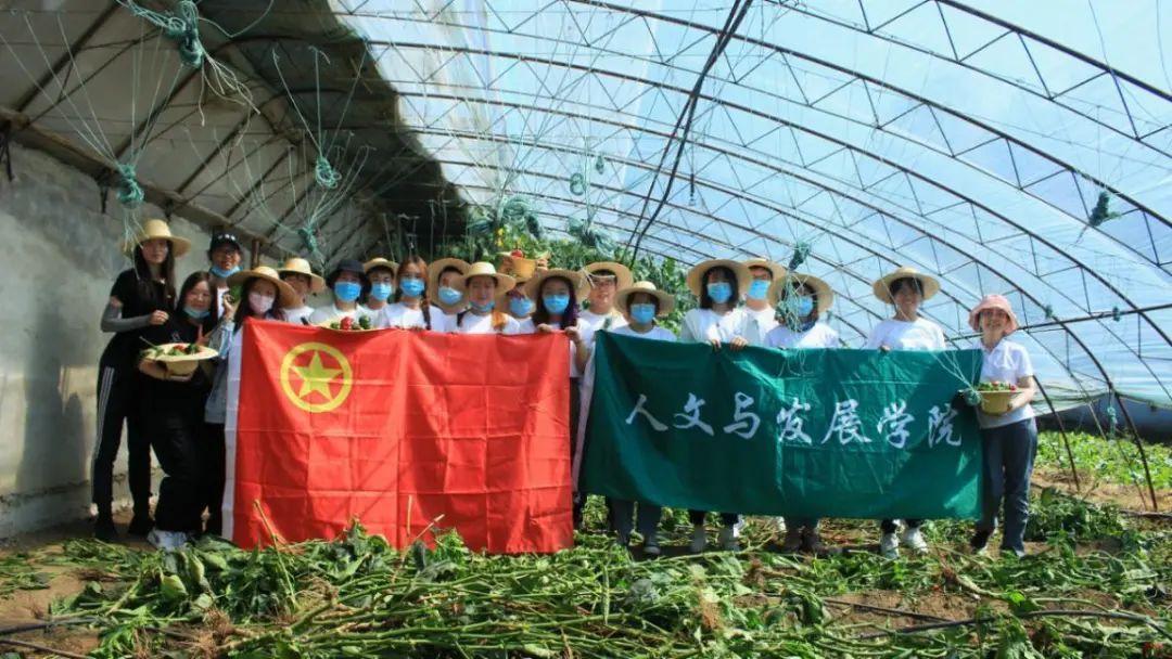 中国农大学子开展农事体验农耕教育庆祝中国农民丰收节图片