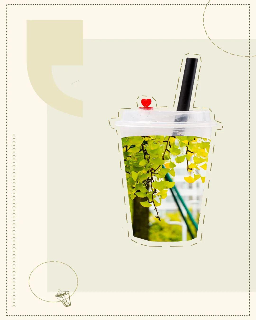 秋天的第一杯奶茶,川农送你!图片