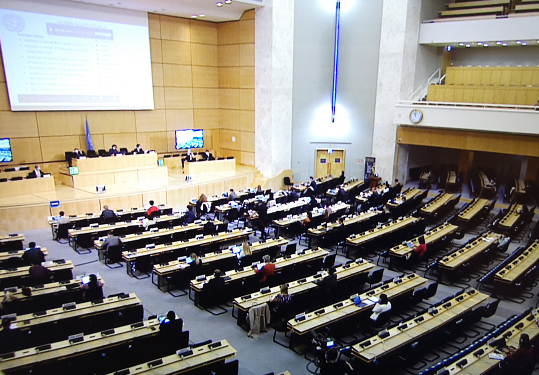 发展中国家代表:反对借涉香港、新疆问题干涉中国内政图片