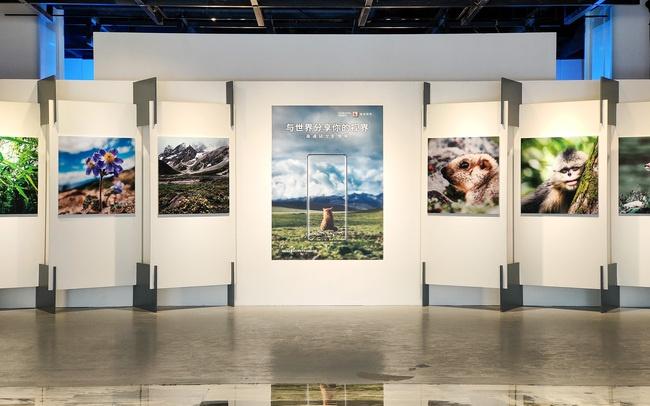 迎接5G+8K视频时代 高通骁龙影像展「与世界分享你的视界」