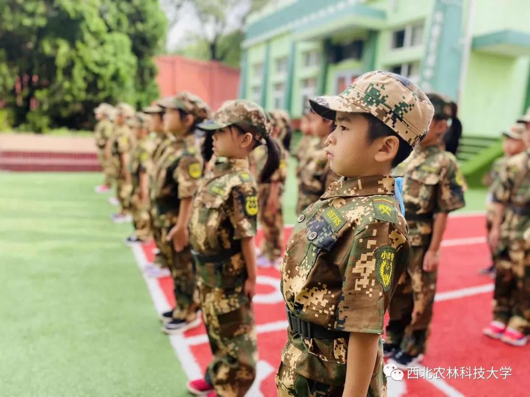 穿上迷彩服,骄阳下他们是坚强勇敢的小小兵!图片
